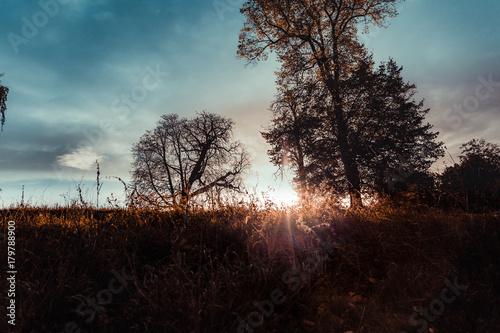Papiers peints Automne autumn landscape on the park