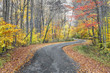 Autumn Curves - Indiana Country Road with Fall Foliage