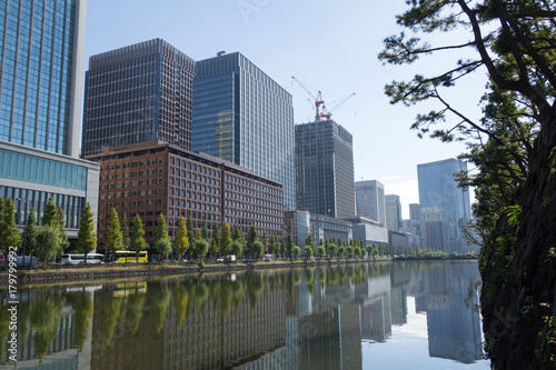 Poster Chicago Tokyo central city in autumn / Fall scenery around the Imperial Palace in the central of Tokyo,Japan