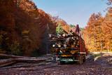 Lorry transporting wood cut - 179804734