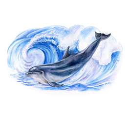 A dolphin realistic and marine, wave. Watercolor. Illustration. Template. Handmade
