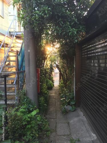 Tuinposter Tokio tokyo rue ensoleillée