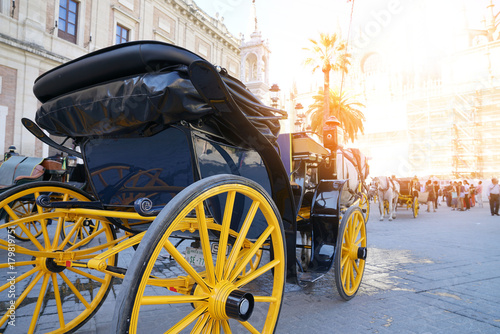 Carriage ride in historic center of Sevilla Poster
