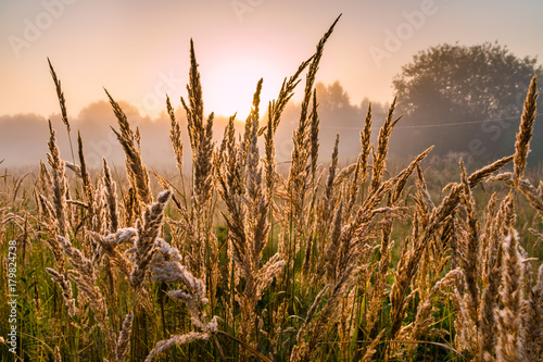 Foto op Plexiglas Ochtendgloren wschód słońca