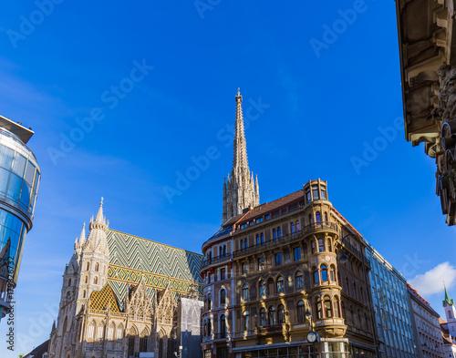 Foto op Plexiglas Wenen Saint Stephan cathedral in Vienna Austria