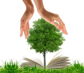 Open book in green grass and tree between the hands