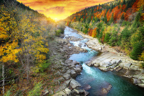 Fotobehang Herfst Autumn creek woods with colorfull trees foliage and rocks in forest mountain