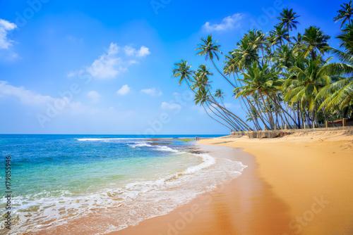 Foto op Plexiglas Natuur Untouched beautiful beach on the Indian Ocean