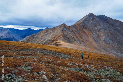 Foto op Plexiglas Blauwe hemel Walking the Dog High In The Mountains