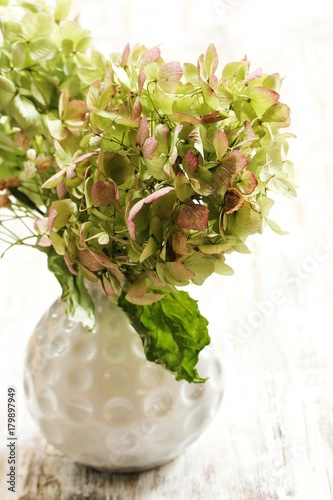 Fotobehang Hydrangea Dried Hydrangea flowers in a white vase on rustic wooden background