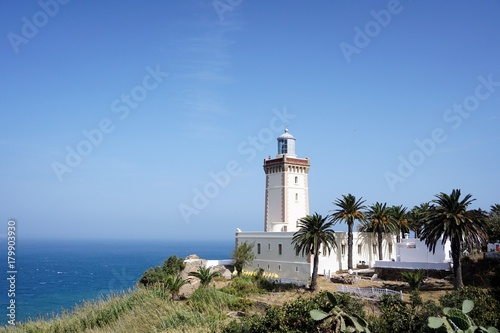 Aluminium Vuurtoren Lighthouse in Morocco with palm trees