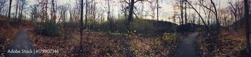 Aluminium Weg in bos forêt