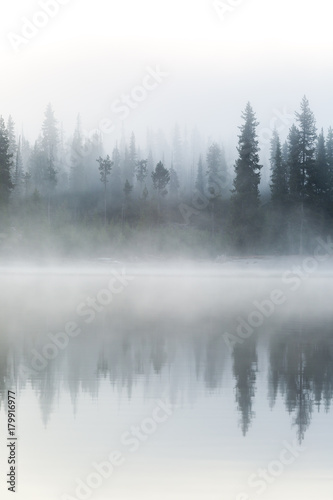 Mist Engulfs the Forest on the Shore of Elk Lake During Sunrise in Central Oregon - 179916977