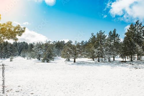 Fotobehang Wit Snow landscape at ski resort