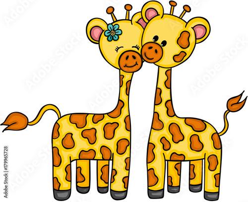 Fototapeta Cute couple giraffe