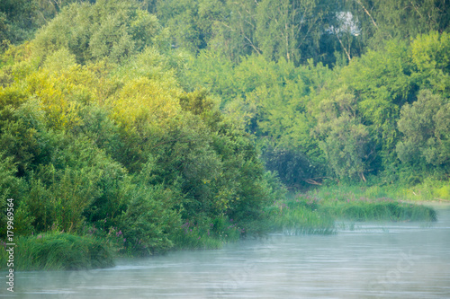 Foto op Canvas Pistache Calm river with forest on the other bank