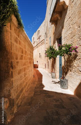 Poster Smal steegje Narrow street in Mdina (Malta)