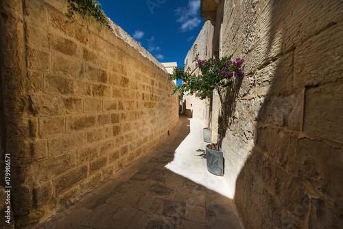 Poster Smal steegje Street in Mdina (Malta)