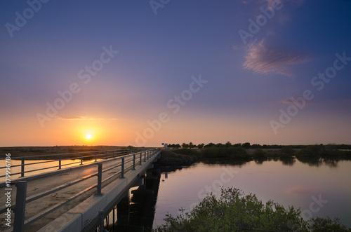 Foto op Plexiglas Ochtendgloren Bridge at Khor Kalba mangrove reserve