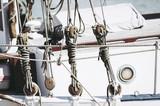 Noeuds de marin - 180005356