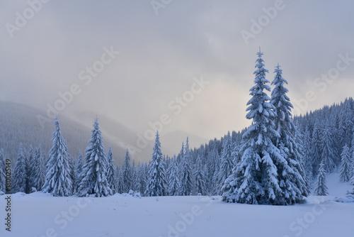 Deurstickers Bleke violet Fantastic winter landscape