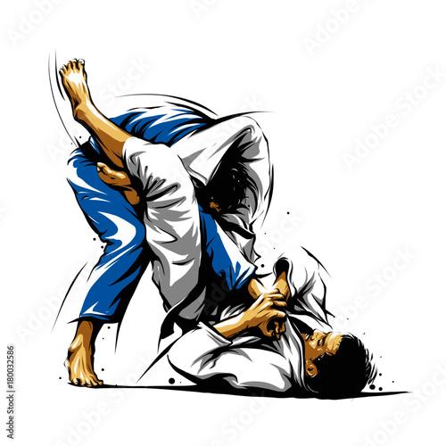 Fototapeta Brazilian Jiu-Jitsu Triangle Choke