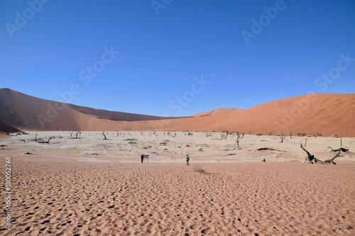 Fotobehang Zalm Namibia Dürre - Wüte - Fernsicht