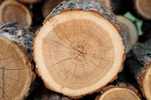 Deurstickers Brandhout textuur Pile of wood