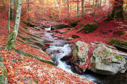 Fotobehang Zwart Waterfall in the autumn beech forest