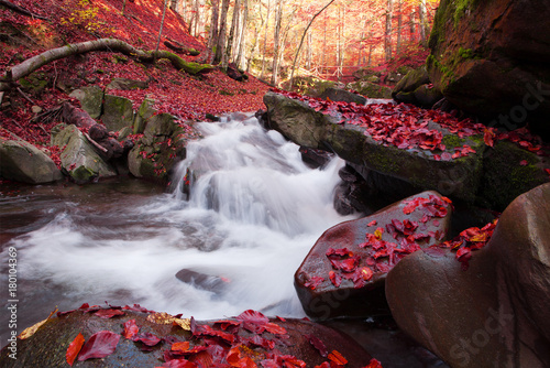 Papiers peints Marron chocolat Waterfall in the autumn beech forest