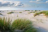 Langeoog, Fliegen, Freiheit, Urlaub, Entspannung: Wildgänse an einer Ostseeküste :) - 180105975