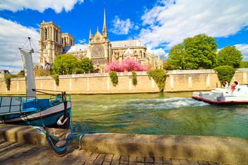 Paris, cathédrale Notre-Dame au printemps