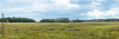 landscape in Scarboro - 180132318