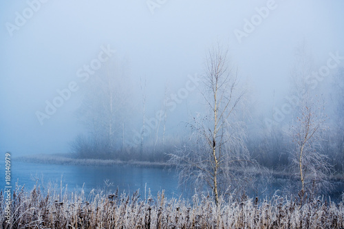 Foto op Plexiglas Blauwe hemel winter landscape with a view of snow-covered trees in the fog