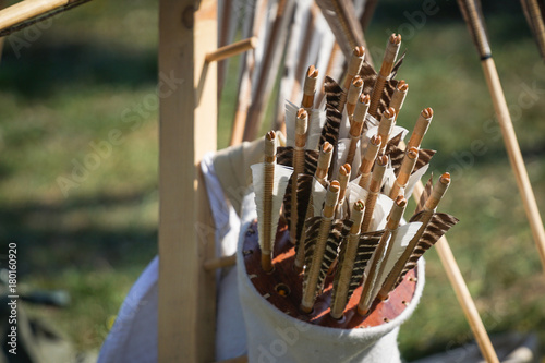 Old style wooden arrows Poster