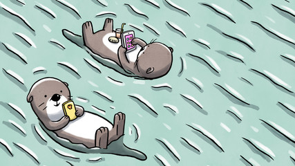Two otters floating on water holding mobile and tablet © Guilherme Yukio