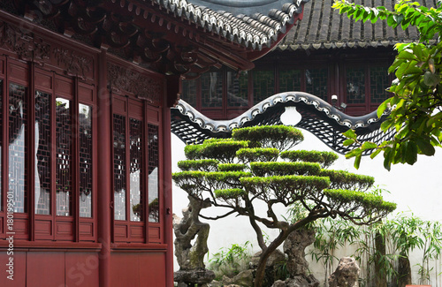 Foto op Aluminium Shanghai Traditional oriental park with wooden pavilions and decorative bonsai