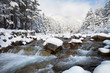 Swift mountain river with stony rapids and snowy forest in the mountains on a sunny winter day