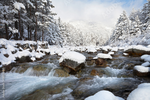 Wall mural Swift mountain river with stony rapids and snowy forest in the mountains on a sunny winter day