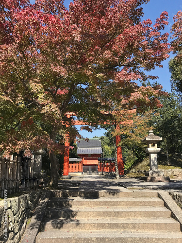Fotobehang Kyoto Daylight view to red gate entering in a japanese temple
