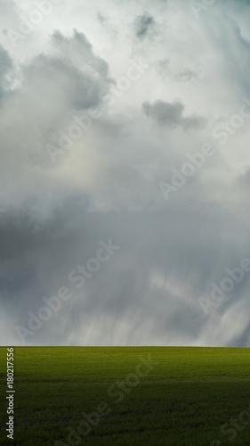 Fotobehang Bleke violet Minimalistic landscape, green field, scenic clouds