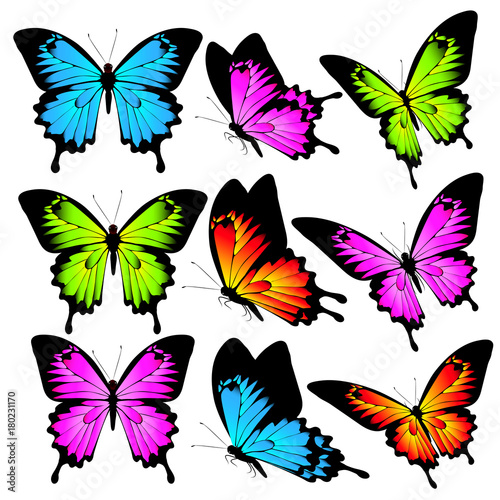 Aluminium Vlinder beautiful color butterflies,set, isolated on a white