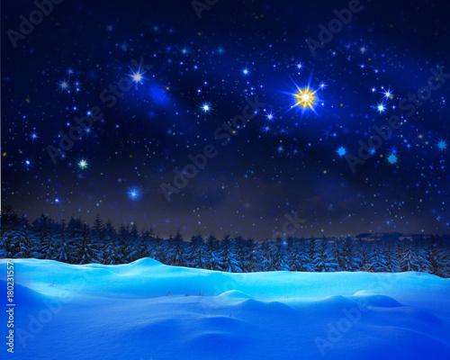 Fotobehang Heelal Christmas sky and winter fir trees.