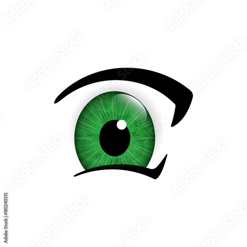 Eye. Human eyes closeup. Beautiful big eyes. Vector illustration - 180240315