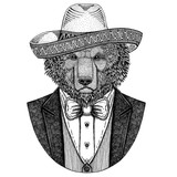 Brown bear Russian bear Hand drawn illustration for tattoo, t-shirt, logotype Bear wearing jacket, vest and bow tie Bear with somrero Mexican national hat