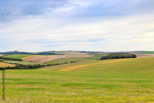 Fotobehang Wit Sussex Patchwork Landscape