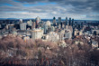 View on Montreal downtown from Mont Royal