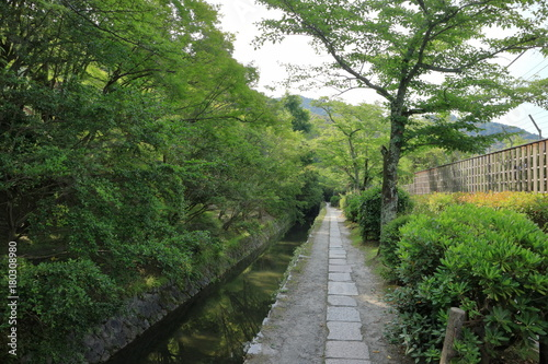 Aluminium Weg in bos 京都哲学の道