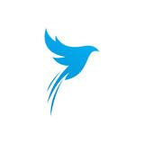 beautiful bird logo template