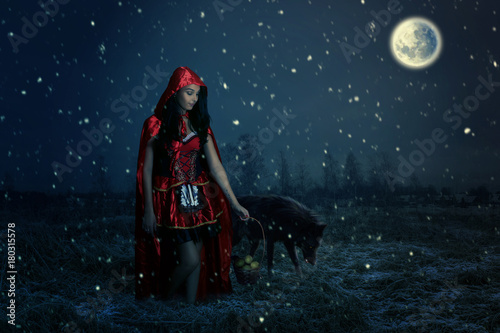 fairy tale concept with a beautiful girl Plakát